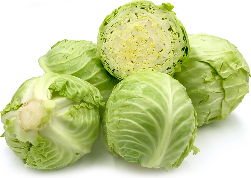 Consume Cabbage the Whole Day