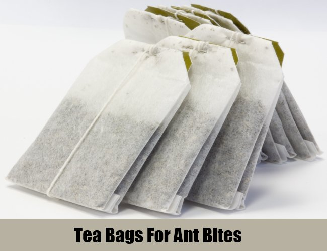 Tea Bags For Ant Bites
