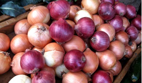 Onion for Toothache