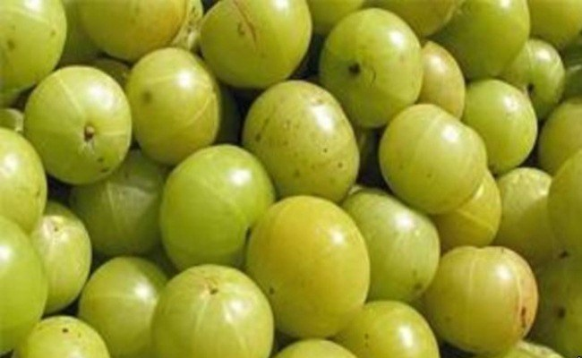 Hair Loss Treatment with Indian Gooseberry