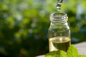 Tea Tree Oil for Yeast Infection