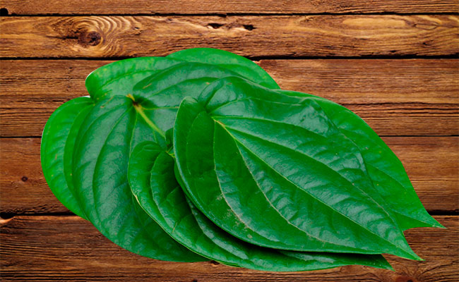 Betel Leaves for Headache
