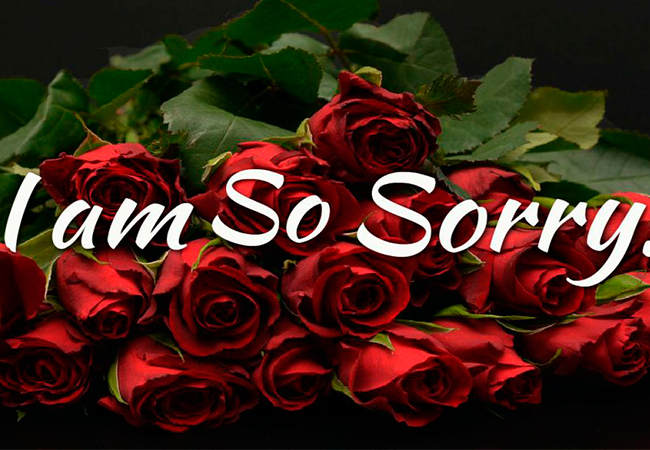 sorry-images