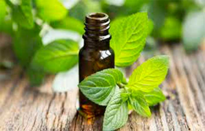 Peppermint for Toothache