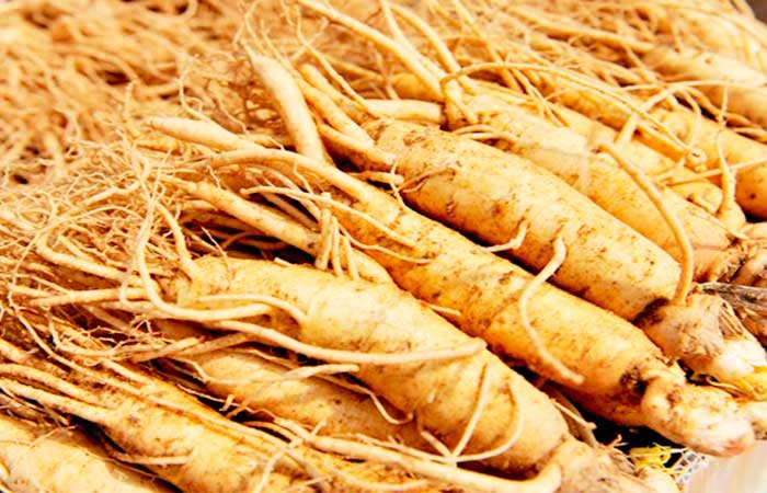 Ginseng for Low Blood Pressure or Hypotension