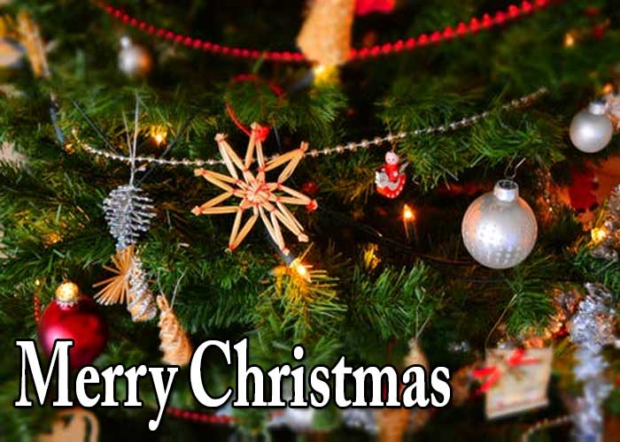 Merry Christmas Quotes, Wishes, Message, Image and More