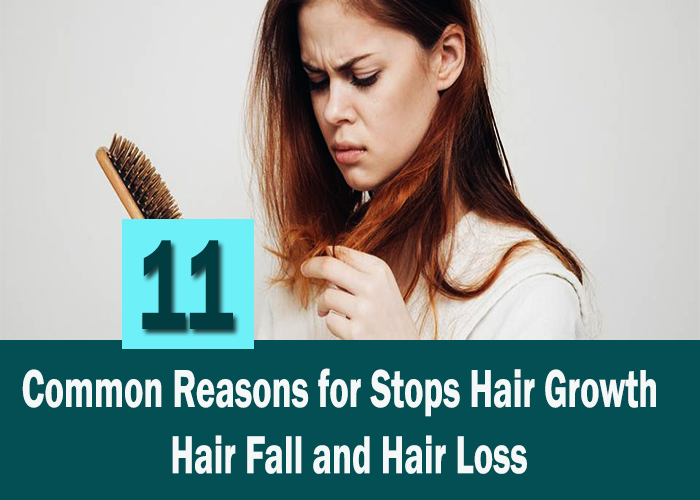 Common-Reasons-for-Stops-Hair-Growth---Hair-Fall-and-Hair-Loss