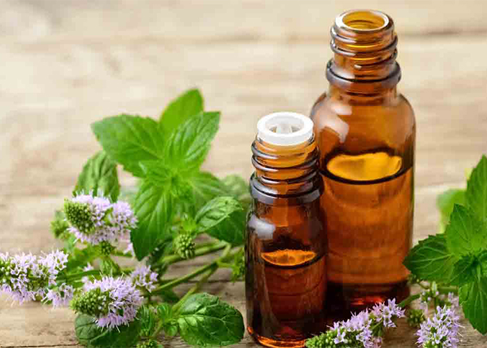 Peppermint Oil to Treat Knee Joint Pain