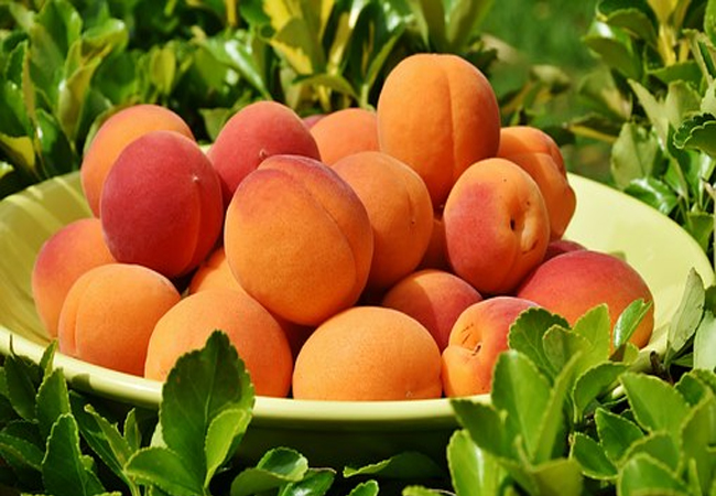 Apricot-for-Healthy-Glowing-Skin