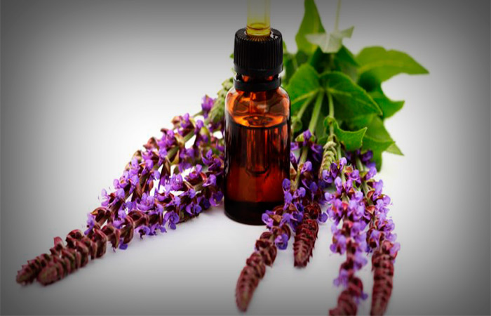 Clary-Sage-Oil-to-Treat-Hormonal-Imbalance