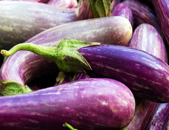 Eggplant-Extract-to-Treat-Skin-Cancer