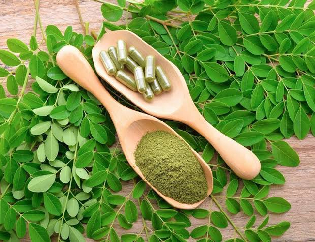 Moringa-for-Fever