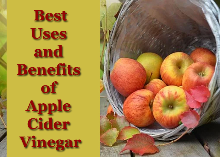 Best-Uses-and-Benefits-of-Apple-Cider-Vinegar