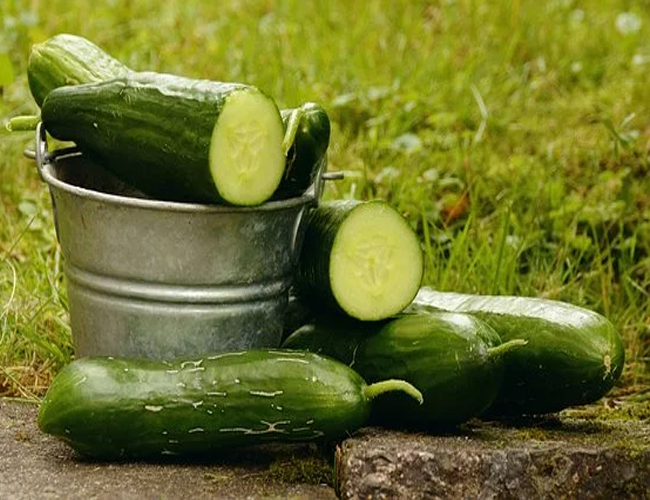 Cucumber for Hair Growth