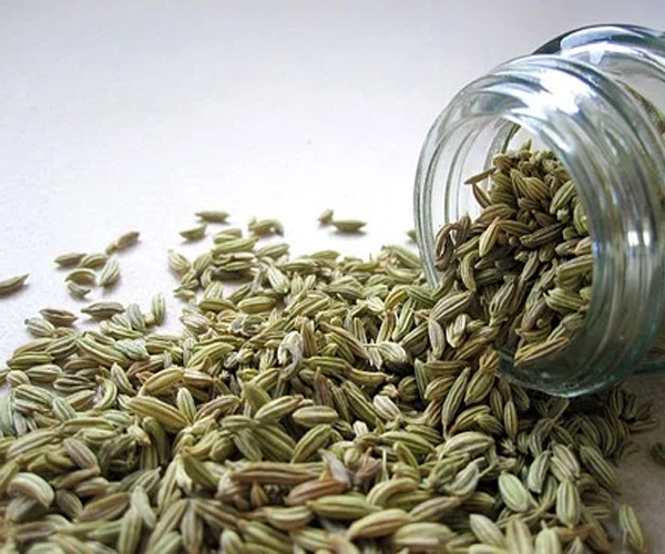 Fennel-Seeds-to-Cure-Digestive-Problem